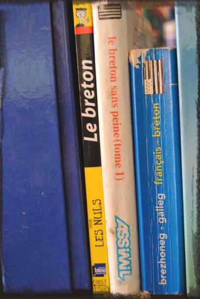 teach yourself breton language books