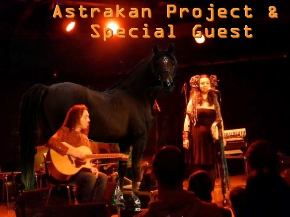 A Horse on Stage with Astrakan Project