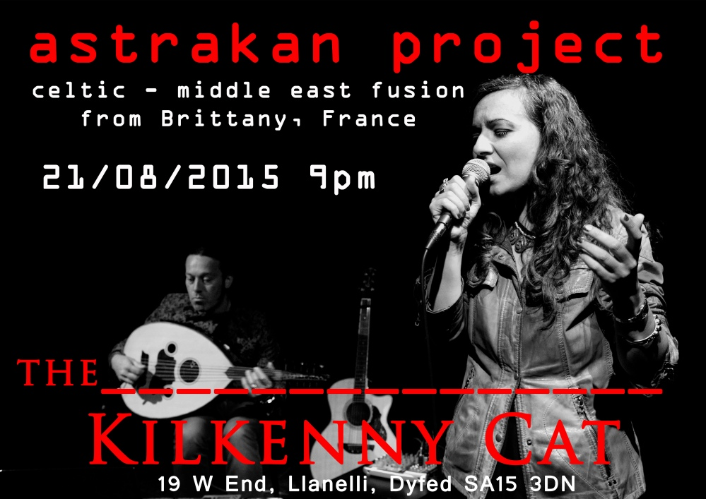 llanelli wales gig poster - the kilkenny cat - astrakan project